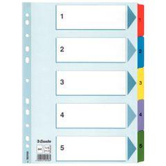 Index-carton-Esselte-Mylar-cu-taste-laminate-A4-index-1-5