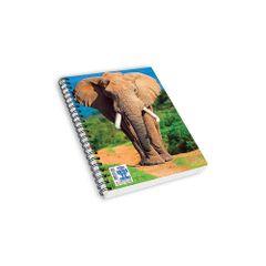 Caiete-Skagcu-aplicatie-AR-model-Elefant
