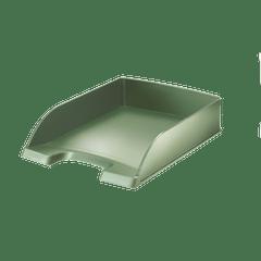 Tavita-documente-Leitz-Style-fistic