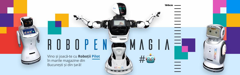 Roboti Pilot Desktop